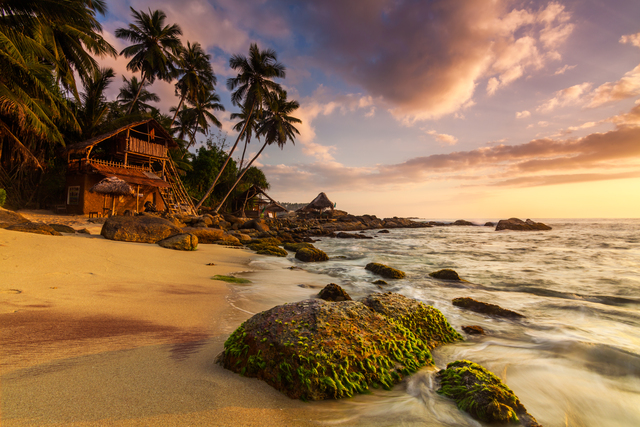Sandy beach at dawn. Sri Lanka