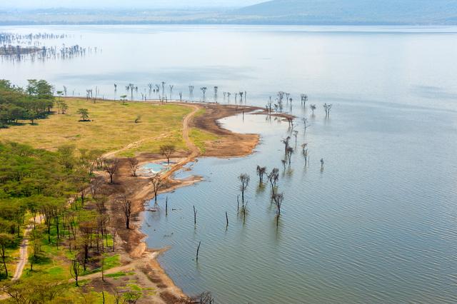 lake Nakuru.